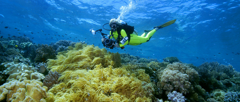 Diving the reefs at Wakatobi present underwater photographers a