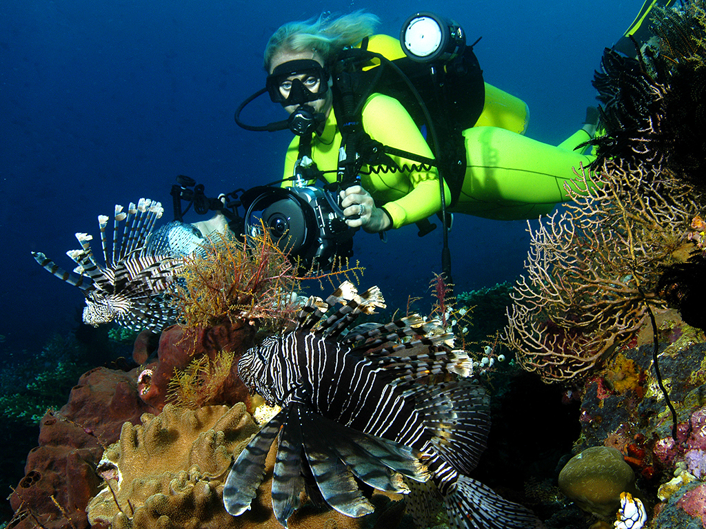 photo by Wakatobi guest Leon Joubert