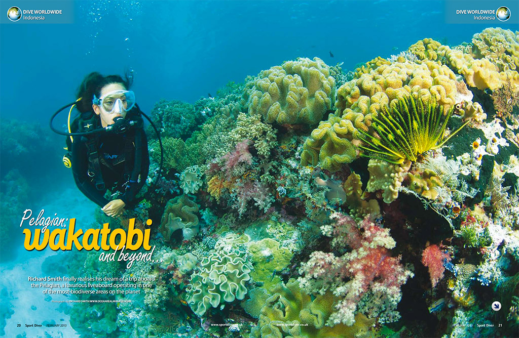Pelagian-Wakatobi and Beyond Sport Diver Feb 2013