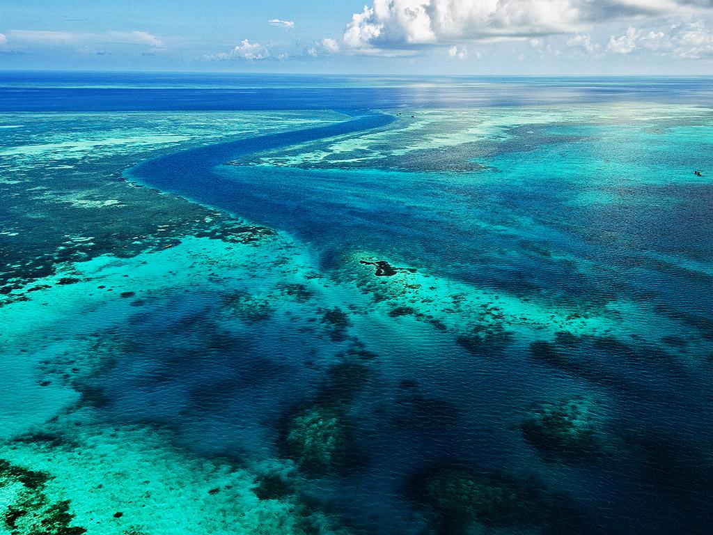 Aerial reef system_didi lotze