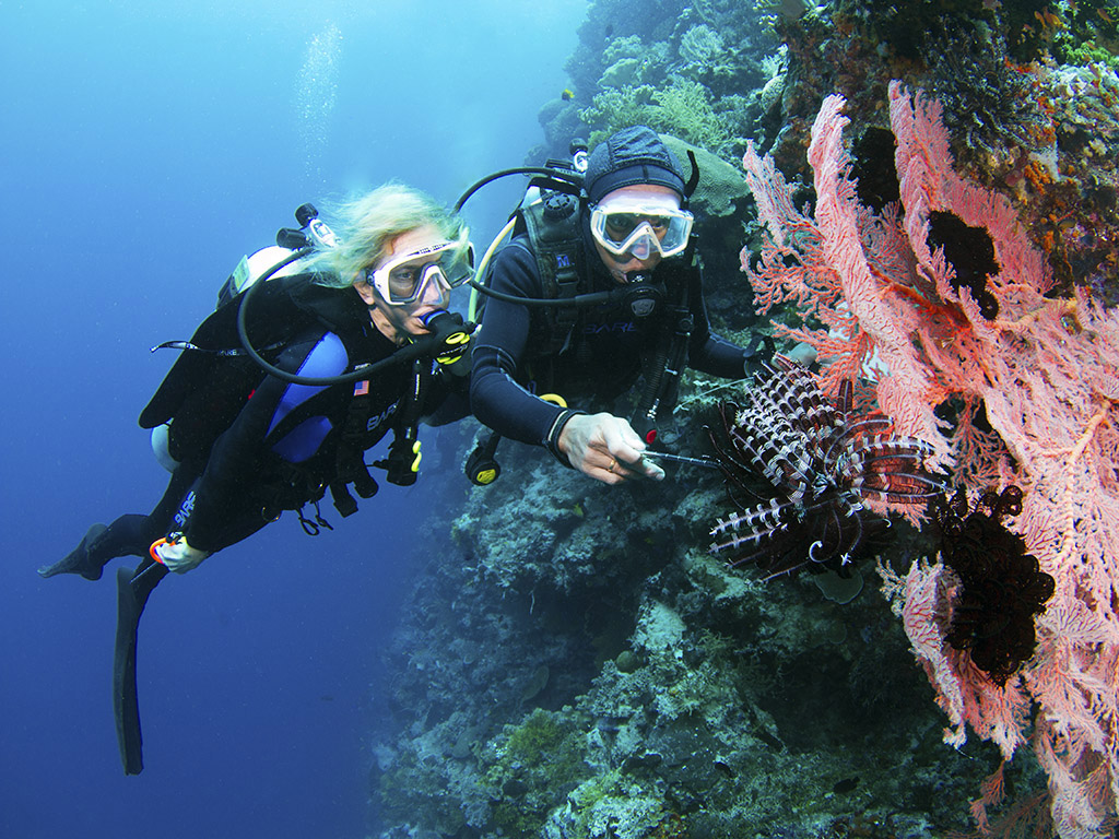Private guide and guest dive house reef - photo walt stearns