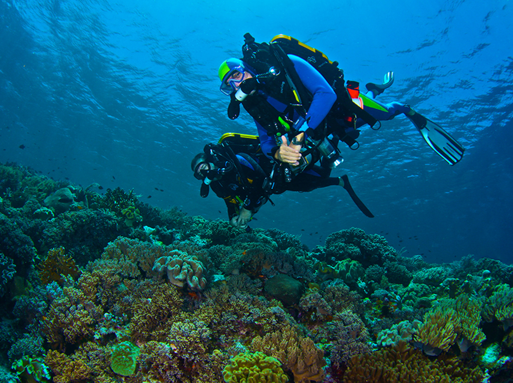 Divers enjoy the silence and a long dive on Wakatobi's house reef.  photo by Steve Miller