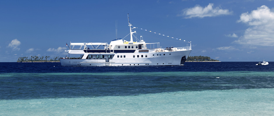 Revised feature Pelagian dive yacht cruising_courtesy Wakatobi Dive Resort