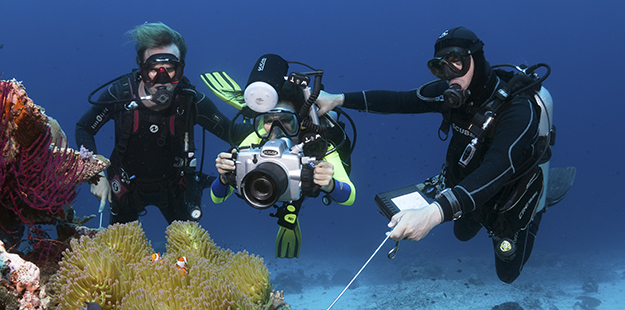 Adding a private dive experience guide to a boat experience can enable photographers to get max of every minute spent under water. Photo by Walt Stearns