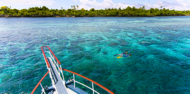 Snorkel excursions on a private boat are a popular option. Photo by Walt Stearns