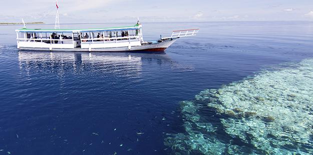 Each of the six custom-built boats in Wakatobi's fleet measures 70 feet (24 meters) long. Photo by Walt Stearns