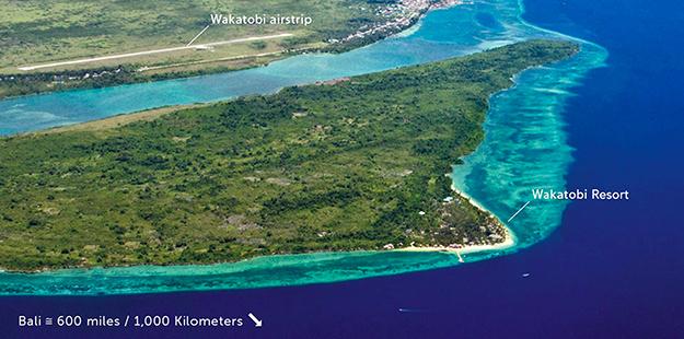 Wakatobi-Resort-airstrip-DM