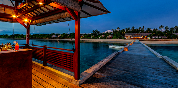A dusk dive on the House just under the jetty bar offers a wealth of opportunities to encounter unique marine life.