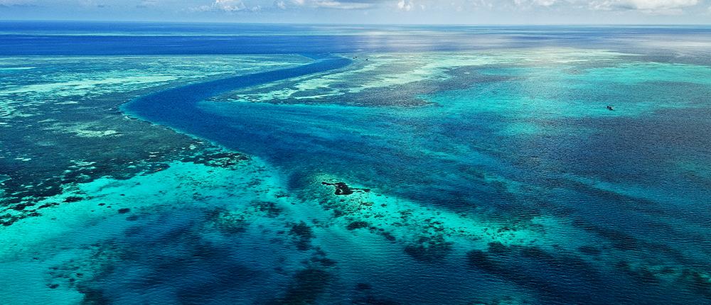 reef-system-wakatobi-resort-sulawesi-indonesia
