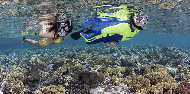 snorkelers-on-the-house-reef-ws