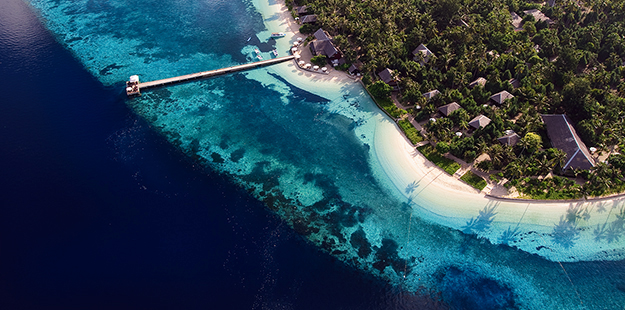 "The Tackett's first experienced Wakatobi Resort's House Reef in 1997. ""It continues to impress to this day,"" says Larry. Photo by Didi Lotze"