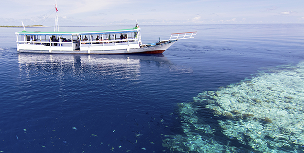 Consistently calm seas enable to provide divers and snorkelers with comfortable rides and easy entries and exits to dive boats.
