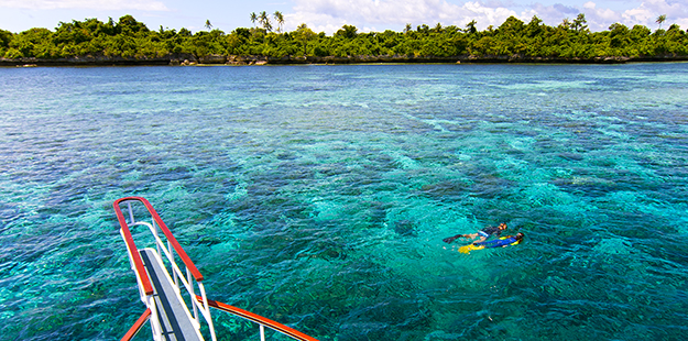 Snorkelers can explore the shallow areas of the reef or hover on the edge of walls and slopes, where clear waters let them watch divers below. Photo by Walt Stearns