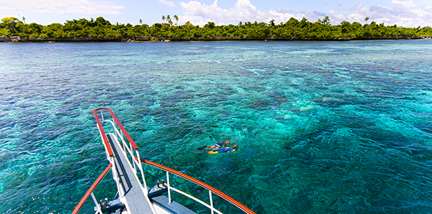 Wakatobi's boats may moor or stay close to the shallows, allowing divers to swim a short distance to depth, while providing snorkelers immediate access to the top portions of the reef.