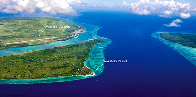Despite Wakatobi Resort's remote location, travel to Wakatobi Resort is far easier than to other destinations in the region with direct service from Bali to our own airstrip in just 2.5 hours.