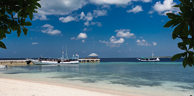 Step on the Wakatobi Resort jetty and your journey is complete. Now your holiday begins, it's time to relax and dive.