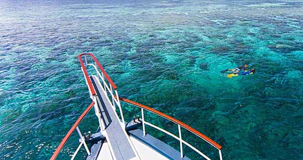 Wakatobi is an idea destination for snorkelers.
