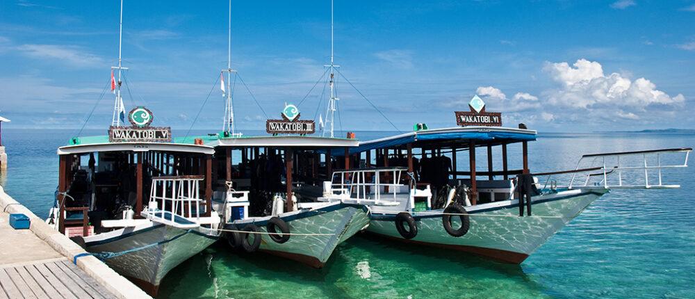 Wakatobi Dive Boats
