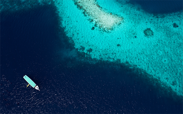 No-take areas encompassing some 20 kilometers of reef surrounding the resort are recognized and respected by local fishermen, who understand these area's roles in replenishing the reefs.