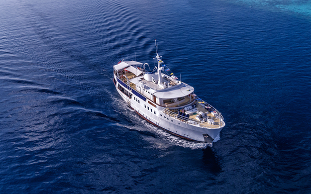 Pelagian liveaboard dive boat takes a max ten divers. A crew of twelve includes an executive chef and stewards, adding fine dining and five-star service to the itinerary.