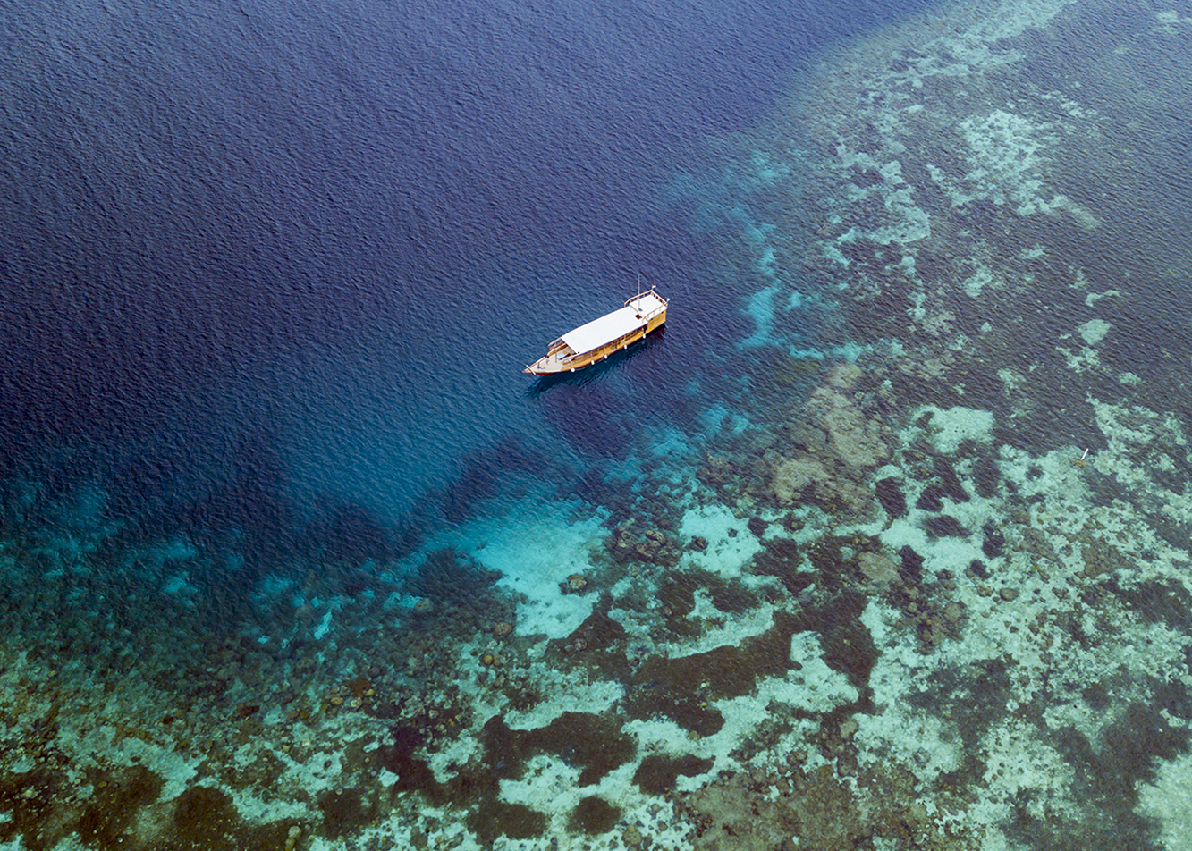 With seven dive boats in service, Wakatobi Dive Resort will once more be in a position to offer divers and snorkelers a diverse daily roster of sites and itineraries.